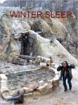 WINTER SLEEP AFFICHE
